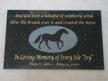 Polished granite Memory plaque in honor of Ivy, the horse