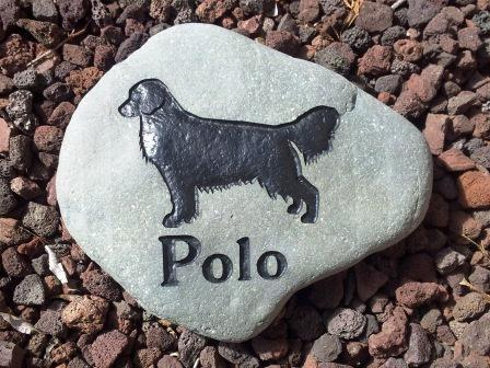 A garden stone for Polo Golden retriever