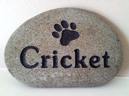 A paw print in the stone to remember cricket