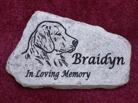 In loving memory for the dog Braidyn
