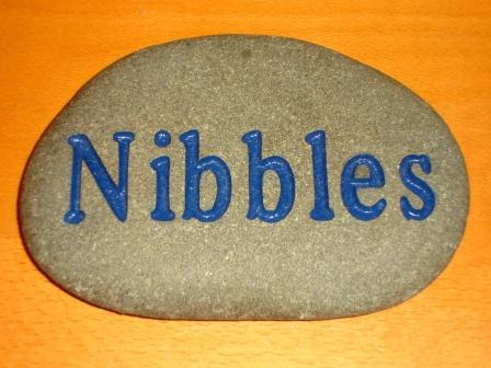 Nibbles memory stone