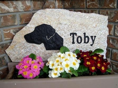 Toby on Mica Slate