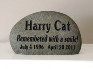 Harry the cat remember on the stone