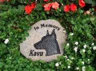 In memory of Kavu, the Doberman pinscher