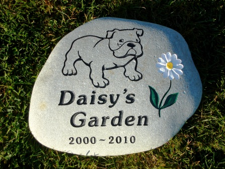 Bulldog garden stone with Daisy flower
