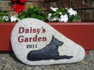 "A memory stone for the German Shepherd ""Daisy""to go in the garden"