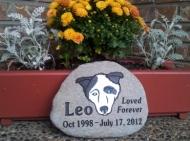 Leo's pet memory stone