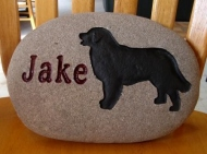Jake's pet memory stone