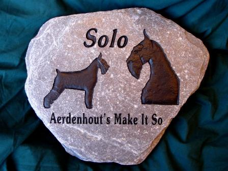 Solo the champion Schnauzer, engraved in a stone for the garden