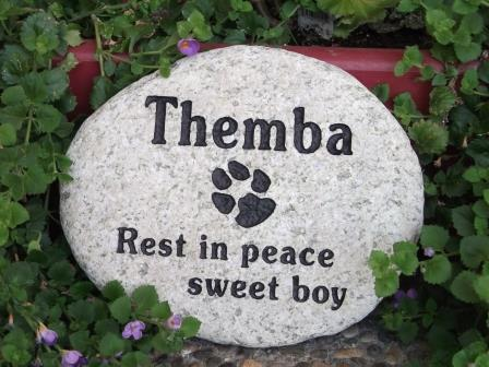copy-of-stones-004Rest in peace, Themba with paw print in stone