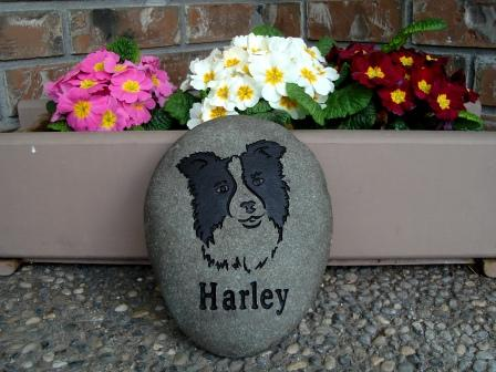 Border collie memory stone