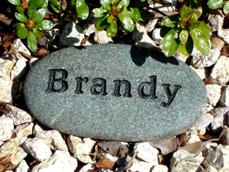 Engraved River rock for Brandy