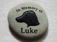 in-memory-luke